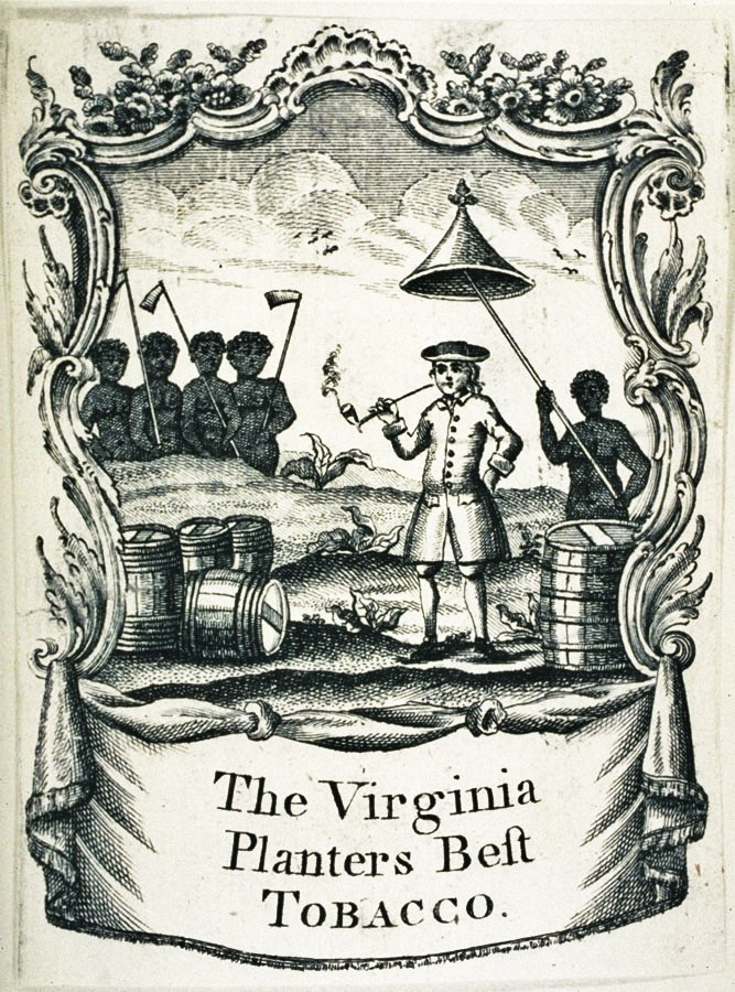 the history of tobacco in colonial virginia The traditional telling of early jamestown history portrayed those pioneers as ill-suited for the task but 20 years of jamestown remained the capital of virginia.